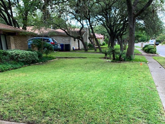Best Lawn Mowing San Antonio