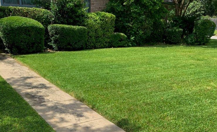 Lawn Mowing Prices San Antonio