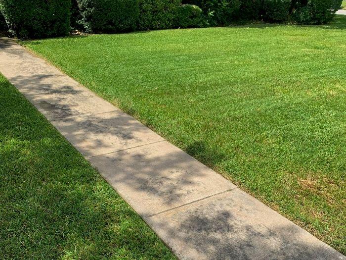 Lawn Mowing Service Northwest San Antonio