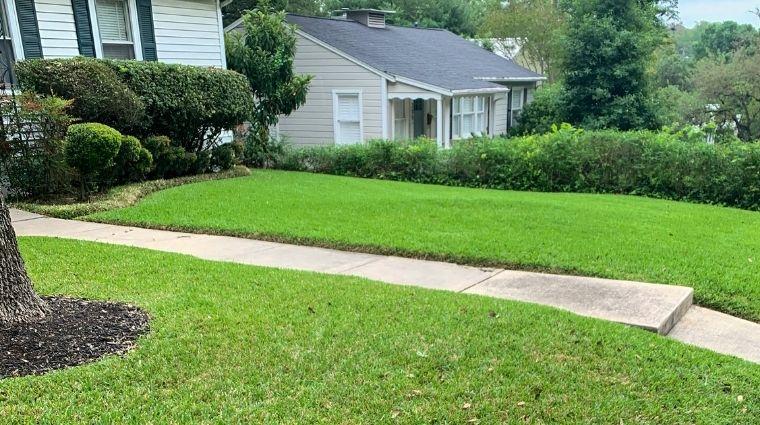 Lawn Shrubs and Walk Way To Front Door